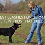 5 Best Leashes For German Shepherds That Pull (2019 Guide)