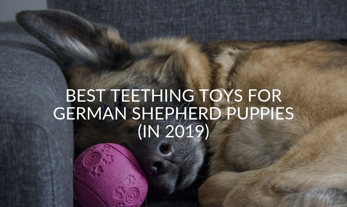 Best Teething Toys For German Shepherd Puppies (In 2019)