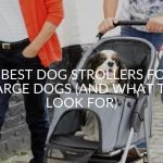 7 Best Dog Strollers For Large Dogs (And What To Look For)